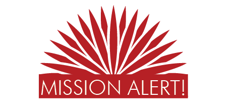 emergency alert logo